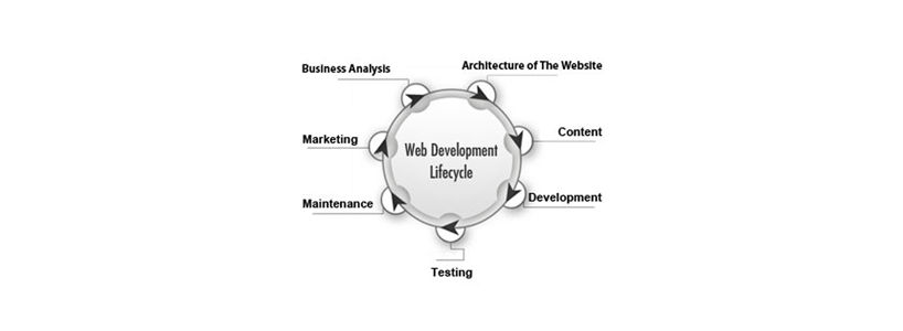 Facts about Web Development Lifecycle (WDL)