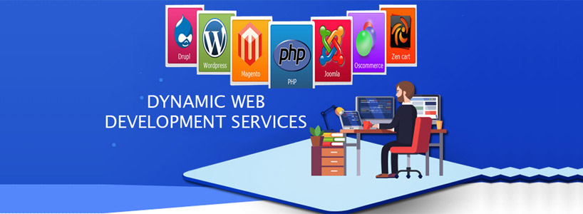 Get Aware With Some of the Vital Facts of Web Designing Website Designing Company India