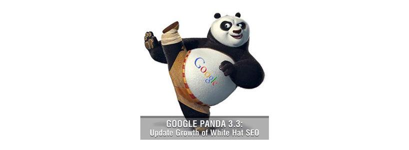 Google Panda 3.3 Update: Growth of White Hat SEO