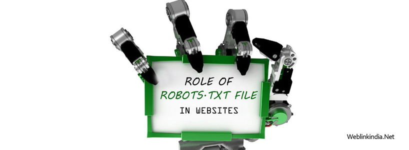 Role of Robots.txt File in Websites