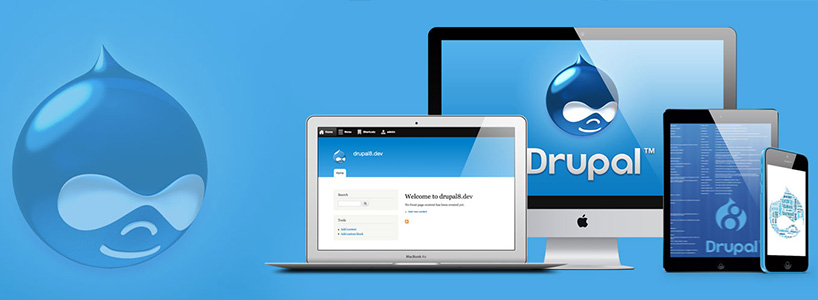 The Web Development Benefits With Drupal
