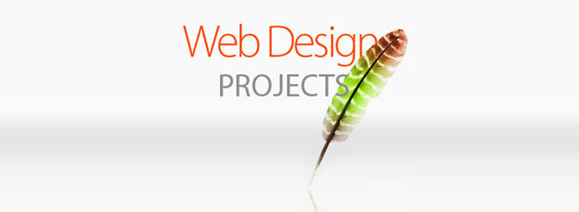 How to make a Web Design Project Successful