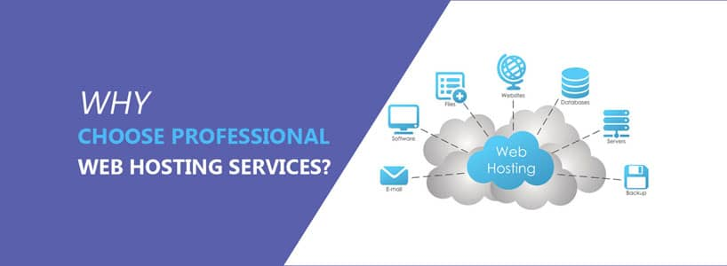 Why Choose Professional Web Hosting Services?